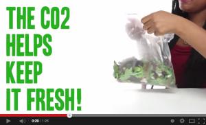 二酸化炭素の力を知ってますか?美味しい野菜の秘訣はあなたにあった!