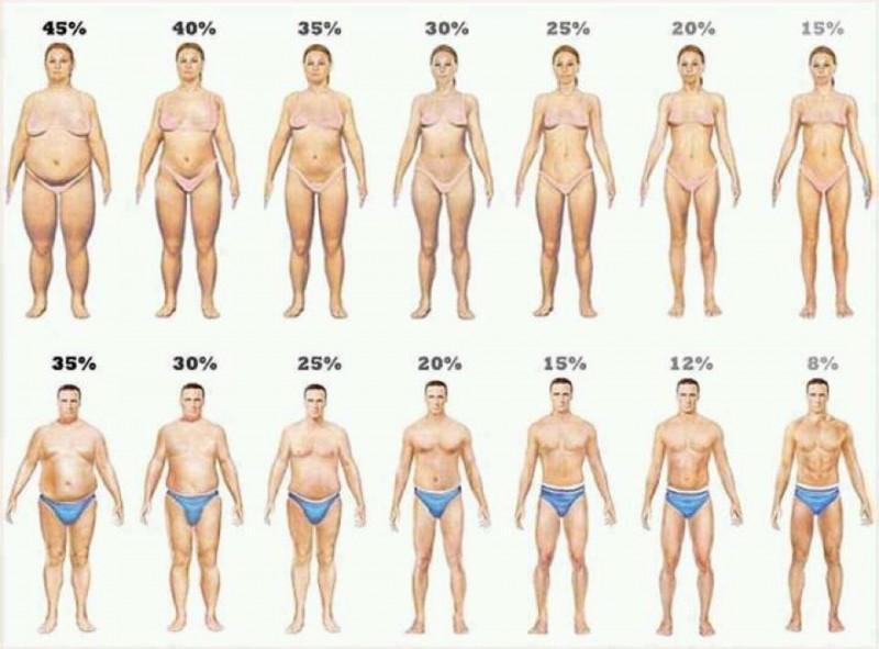 体重より体脂肪率が大切って言うけど。。。 | パーソナルトレーナー安藤宏行のダイエット論