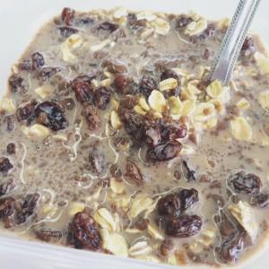 oatsprotein